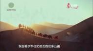 【大美青海】丝路青海道印象3
