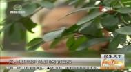 民生天下 2019-06-12