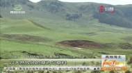 祁连特色农畜品牌助推农牧产业发展