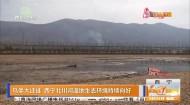 鸟类大迁徙 西宁北川河湿地生态环境持续向好