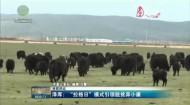 青海新聞聯播 20200707