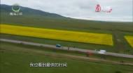 大美青海 20200729