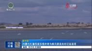 内蒙古扎鲁特旗多措并举为候鸟营造良好迁徙港湾