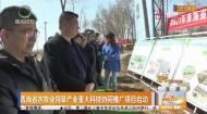 青海省农牧业饲草产业重大科技协同推广项目启动