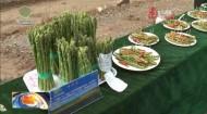 绿色有机农畜产品示范省创建暨全省牦牛产业发展现场观摩会在黄南州举行