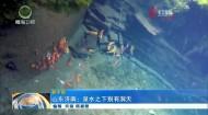 山东济南:泉水之下别有洞天