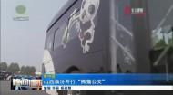 """山西临汾开行""""熊猫公交"""""""