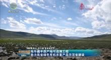 牦牛藏羊原产地可追溯工程助力我省绿色有机农畜产品示范省建设