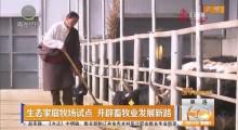 生态家庭牧场试点 开辟畜牧业发展新路