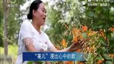 大美青海 20170920