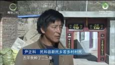 大美青海 20171128