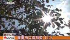 天天公益 20171201