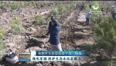 互助县全年计划植树造林92万株