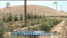今年海南州义务植树将超260万株