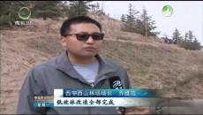 西宁:铆足干劲增绿量 提品质