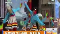 玛多特色文化亮相上海大世界化