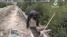 贵德:着力构建生态文明新型县城