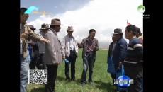 同德:田间地头授技术助增收