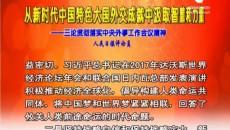 从新时代中国特色大国外交成就中汲取智慧和力量