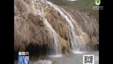 澜沧江源——野生动物的天堂