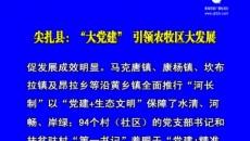 """尖扎县:""""大党建""""引领农牧区大发展"""