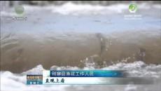 又到湟鱼洄游季 新举措呵护青海湖大生态