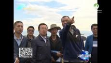 海南新闻联播 20180710