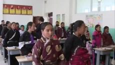 玛多县政协主席才旦带队专题调研全县中小学教育教学工作