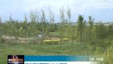 海东市湿地面积达17.88万亩