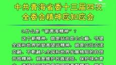 中共青海省委十三届四次全委会精神应知应会