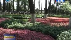 """西宁市公园植物有了二维码""""名片"""""""