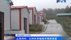 上浪湾村:以特色养殖助农增收致富