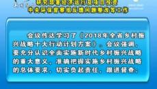 王勇主持召开市委常委会会议研究部署经济运行及项目投资中央环保督察组反馈问题整改等工作