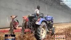 海东:现代农业开辟一片新天地