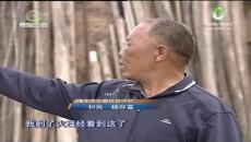 """新时代 新亮点  """"枫桥经验""""青海行"""