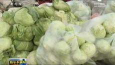 市场冬菜供应充足 价格与往年持平