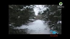 海北州气象台继续发布道路结冰黄色预警信号