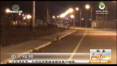 雪豹首次现身玉树称多县城