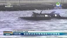 1994年:省政府决定对青海湖实行封湖育鱼