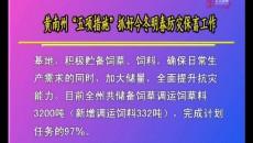 """黄南州""""五项措施""""抓好今冬明春防灾保畜工作"""