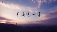 青海湖裸鲤 藏羚羊?;? /></a> <p><a href=