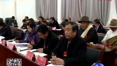 张文魁 王建民 索南东智分别参加分团审议