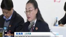两会专题报道:人大代表分团审议《政府工作报告》