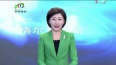 格尔木新闻联播 20190320