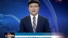 鸟成云对海东市宣传思想文化工作的批示