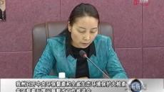 黄南州召开中央环保督查和全省生态环境保护大检查专项督查反馈问题整改工作推进会