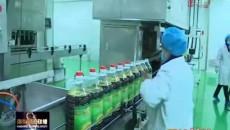 民营企业海东巡礼:打造国家级产业化龙头企业