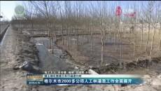 格尔木市2600多公顷人工林灌溉工作全面展开