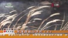 天天公益 20190402