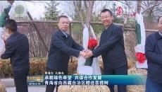 承载绿色希望 共谋合作发展 青海省向西藏自治区赠送菩提树
